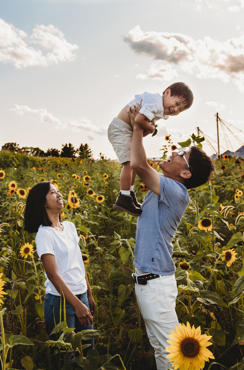sunflower field mini session new jersey