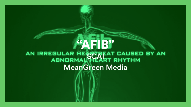 Meangreen-media-association-video-company00011
