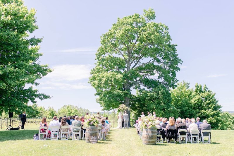 ciccone-vineyard-wedding-traverse-city_0002