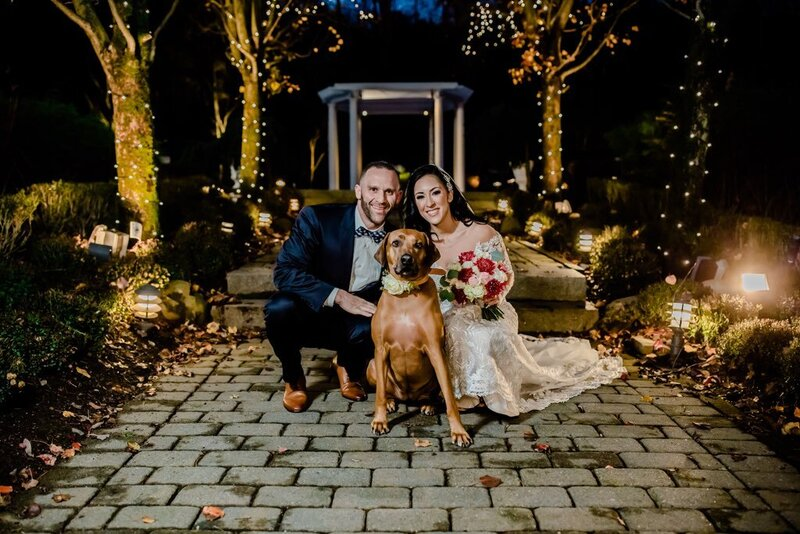 dog in wedding in New Jersey