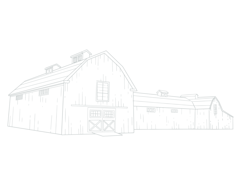 The Grand Texana Barn Sketch-01