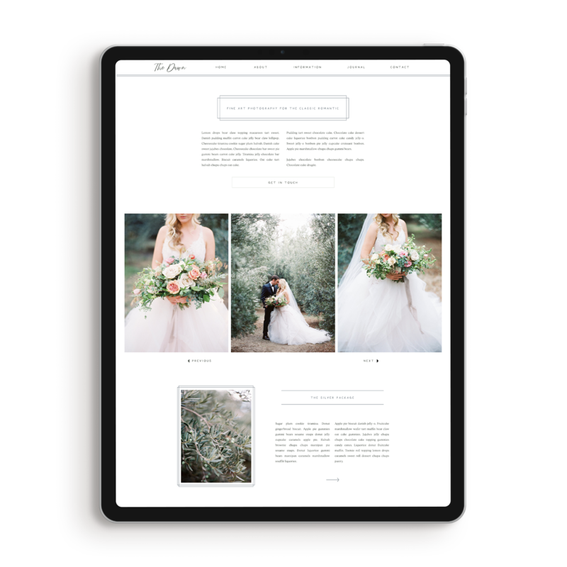 High End Photographer Showit Template
