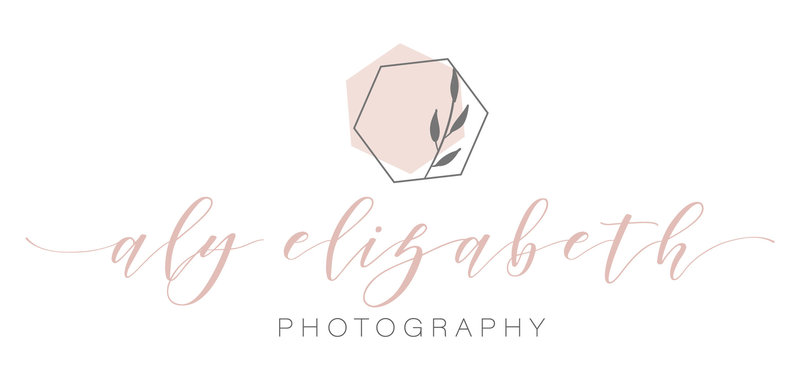 Aly Elizabeth Photography_Main Logo