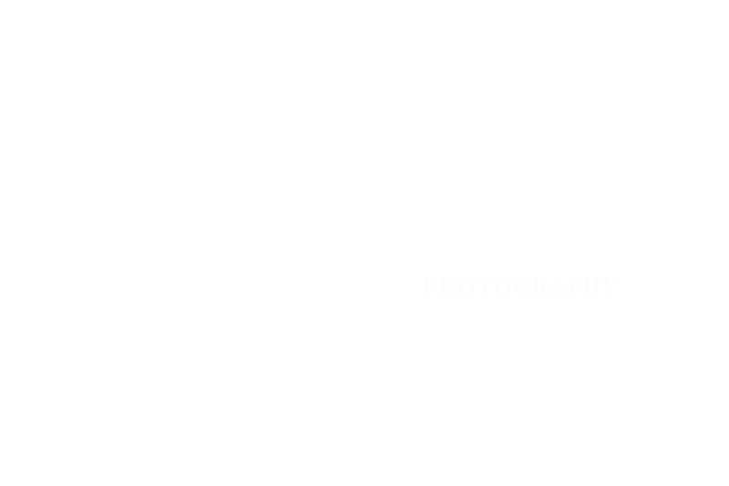 Brad-Livengood Photography Logo White no background