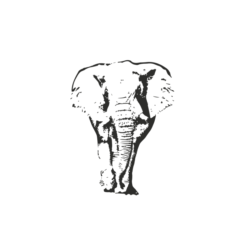 Aaron Wilson Photography Logo- Elephant Transparent (1)