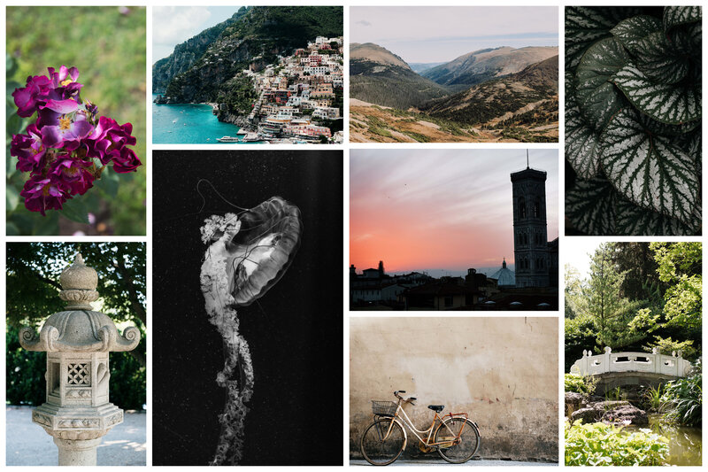NatureTravelCollage