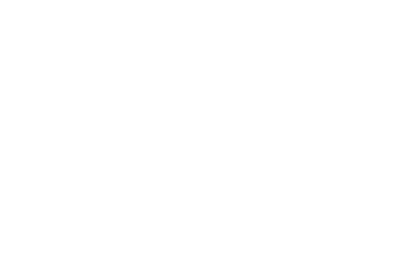 WebinarSuccessRoadmap_White