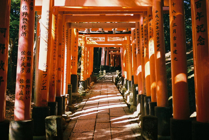 Red torii at Fushimi Inari Shrine