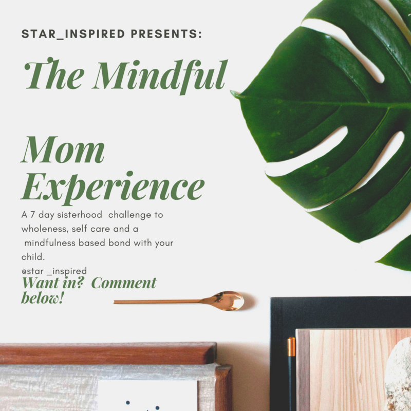 The Mindful Mom Experience