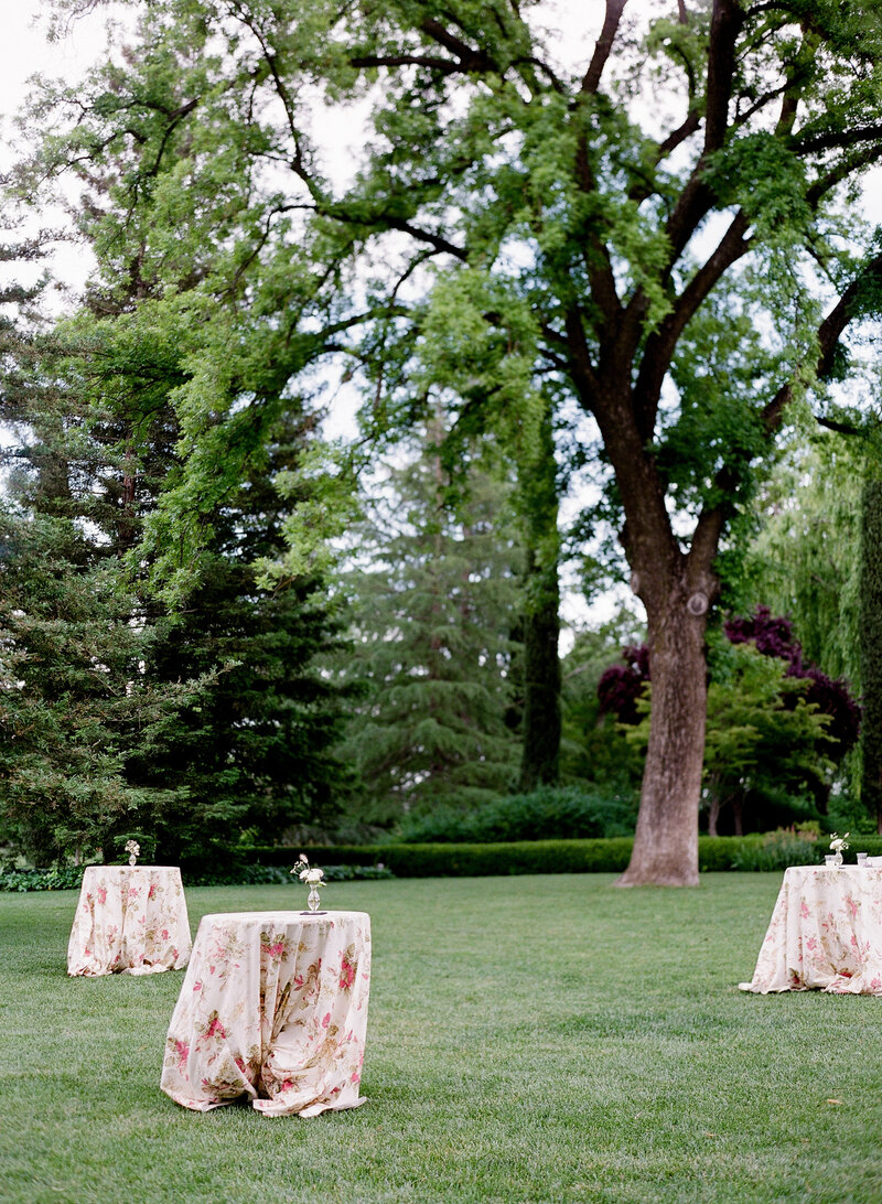 wendy-kevon-park-winters-wedding-contigo-ranch-frederickburg-139