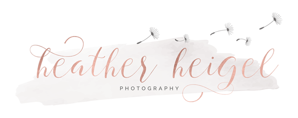 Heather Heigel Photography_Main Logo copy
