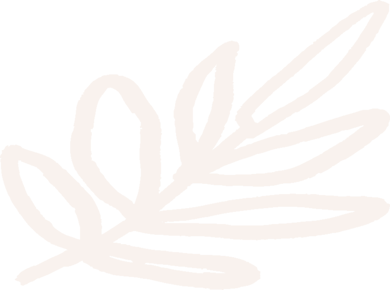 Handdrawn-Palm-Leaf