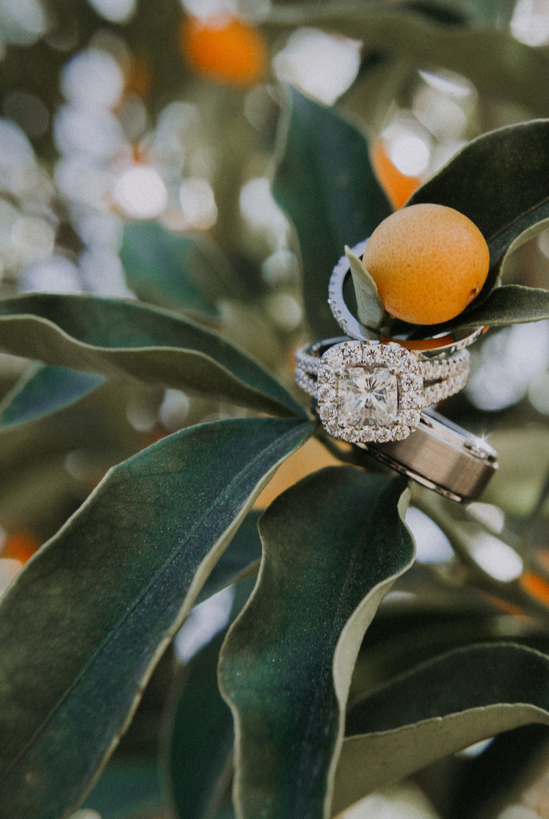 Callaway Winery wedding photos rings hanging in orange tree