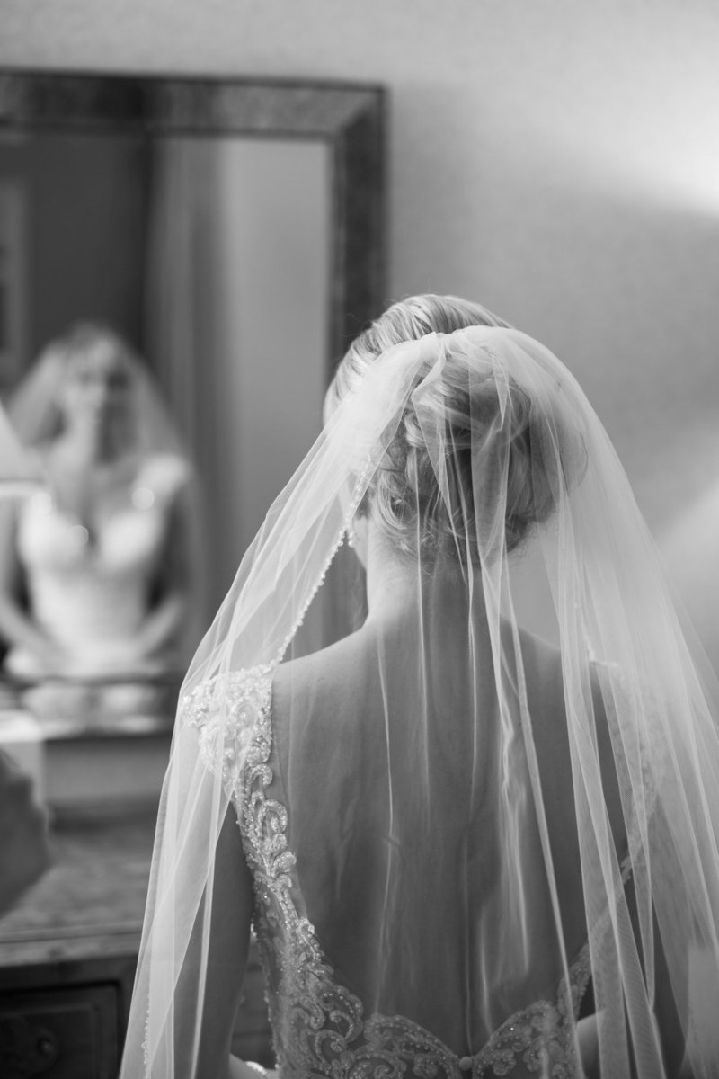Classic bridal portrait with veil