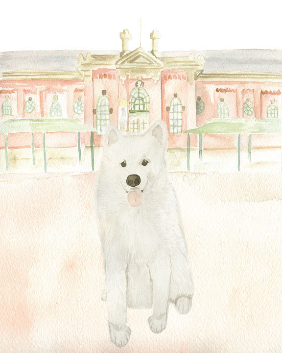 Watercolor-Pet-Portrait-Hoover-Eastern-Market-The-Welcoming-District