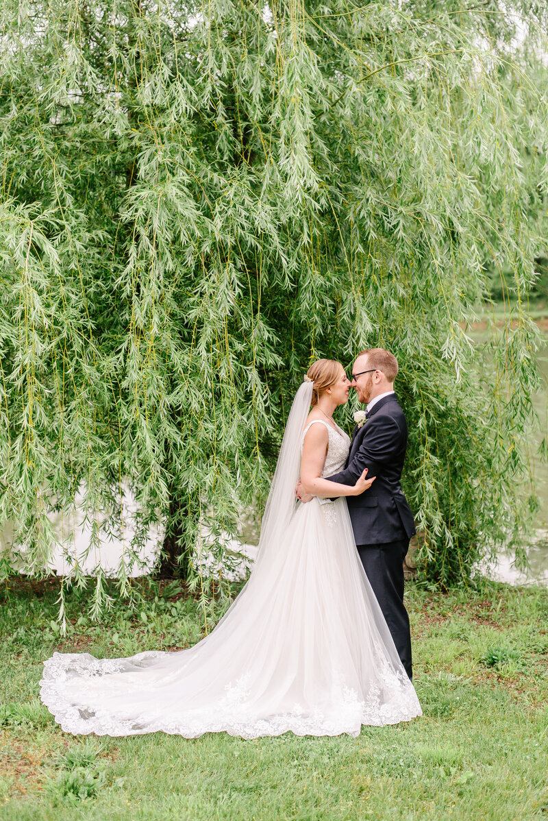 A bride and groom snuggle below a weeping willow at Lost Hill Lakes.
