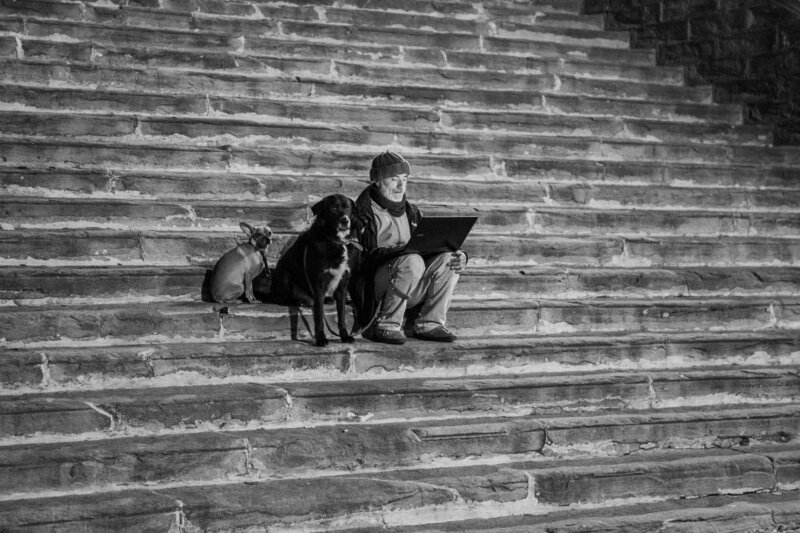 man and dogs on laptop on stairs Cortona, Italy