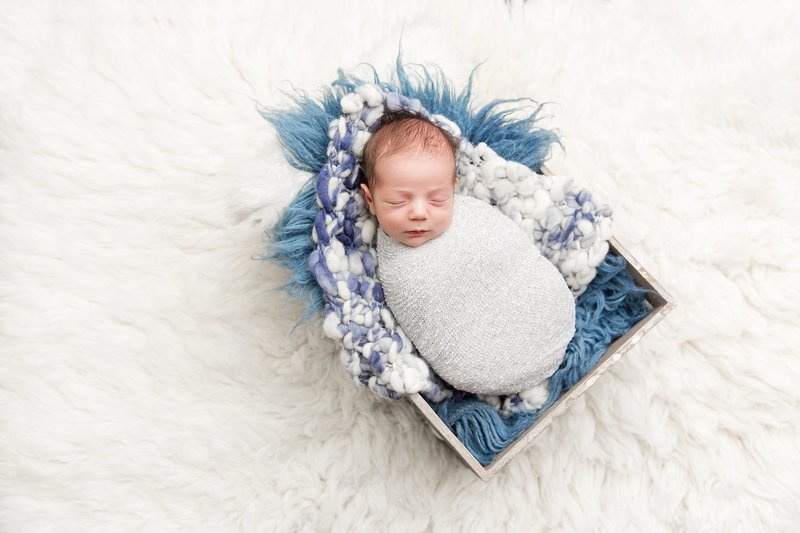 Baby boy in crate blue and white fur