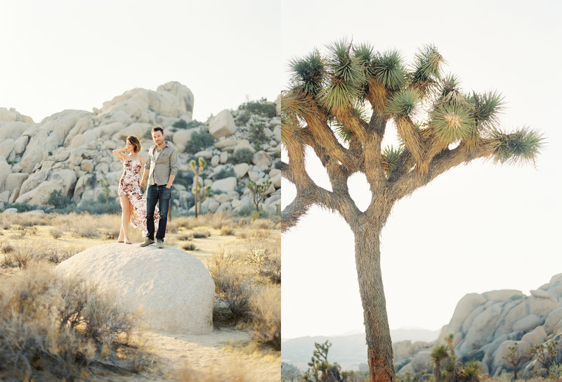 22-Joshua-Tree-Engagement-Session