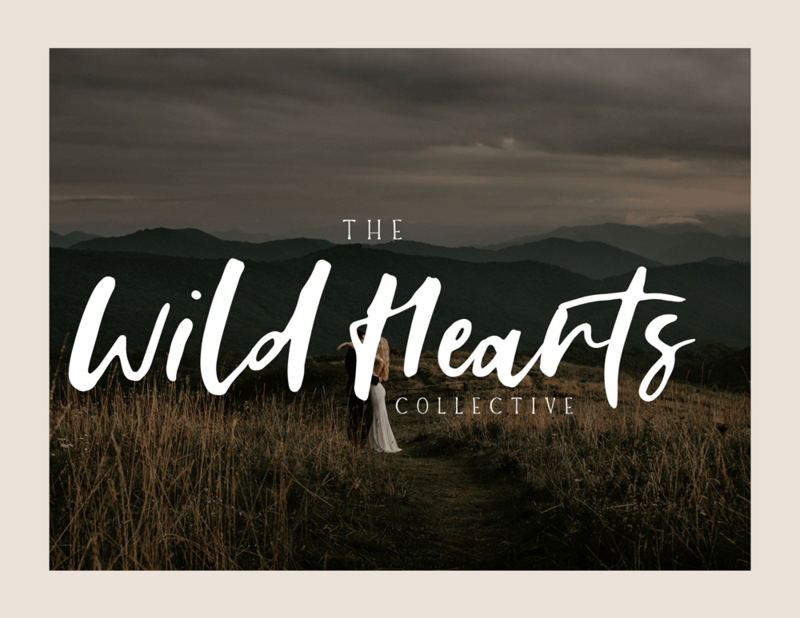Portfolio picture for Wild Hearts Collective with business word mark laid over picture