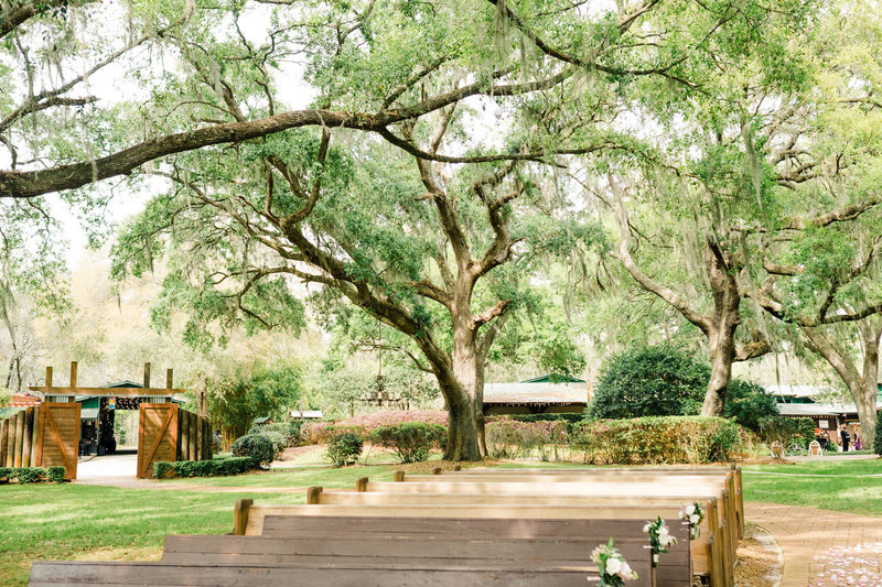 Ceremony site for Club Lake Plantation wedding with huge oak trees