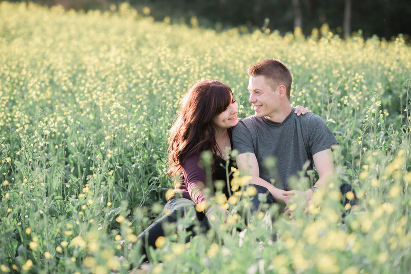 Red Deer Photographers-Raelene Schulmeister Photography- engagement photos-engagement photos in canola