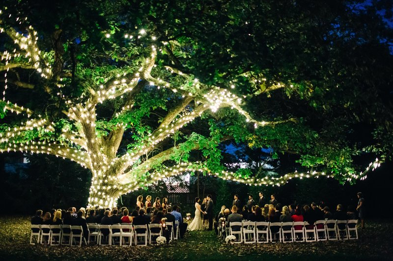 An Aldi Mansion tree glows at night during a non-denominational wedding ceremony at Terrain. The couple chose Lehigh Valley Celebrants for their wedding officiant.