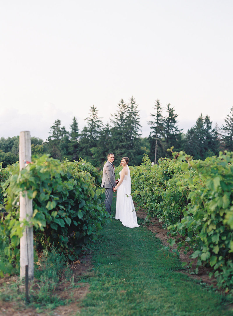 Jacqueline Anne Photography - Ottawa vineyard wedding-28
