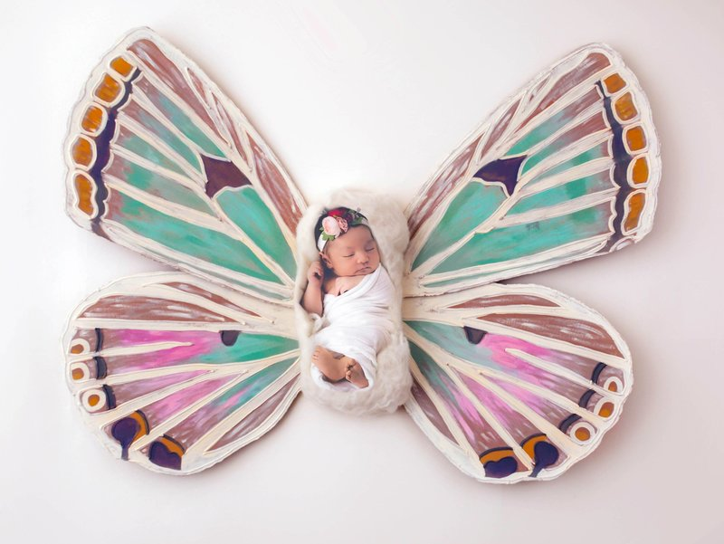 butterfly-newborn-photography