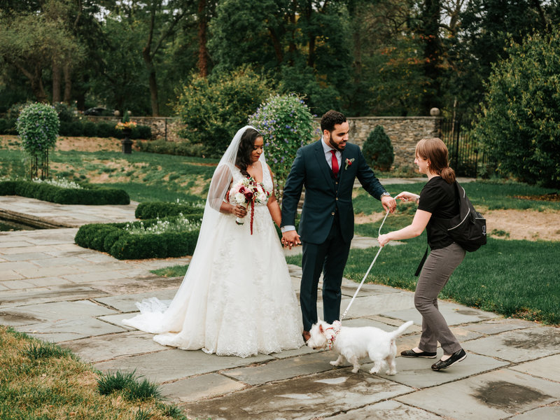 Pawfect for You Pet Care during wedding New York Massachusetts Connecticut New Jersey Pennsylvania4