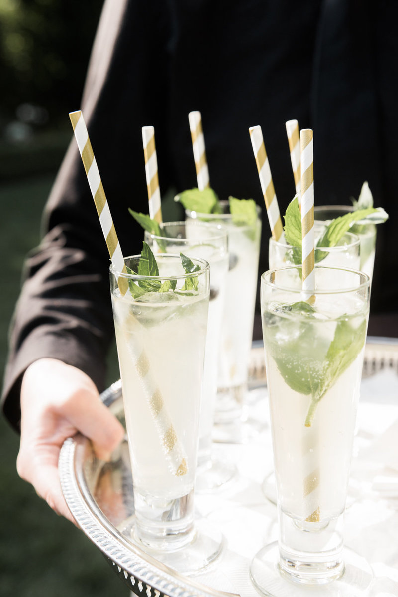 Fizzy gin cocktails with mint sprigs