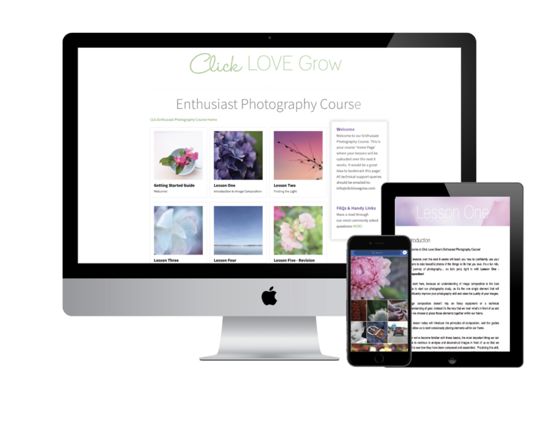 mockup-enthusiast-course