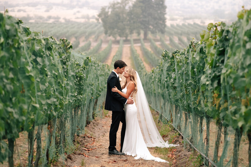 Portrait of bride and groom in the vineyard at Tsillan Cellars winery in Chelan, WA