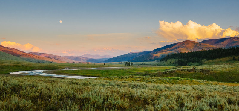 TianaSimpsonPhotography-Yellowstone-02