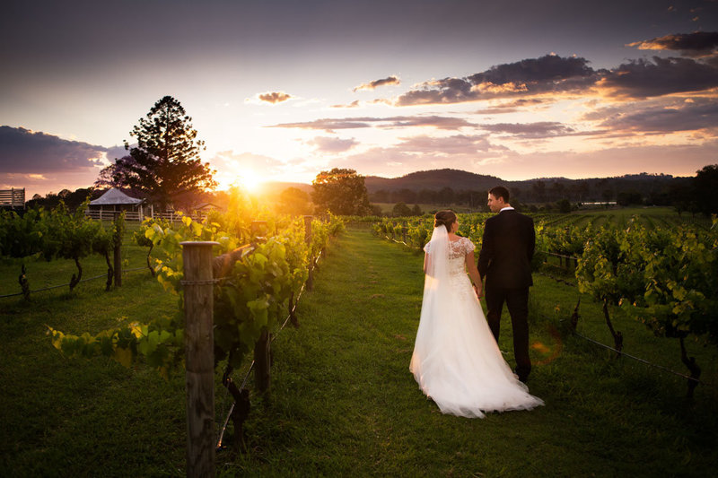 Albert-River-Wines-Tamborine-Wedding-38