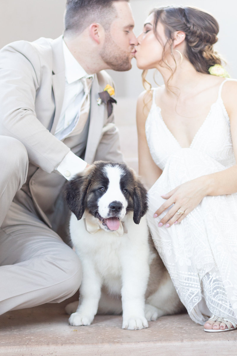 HUsband and Wife kissing with St. Bernard Puppy