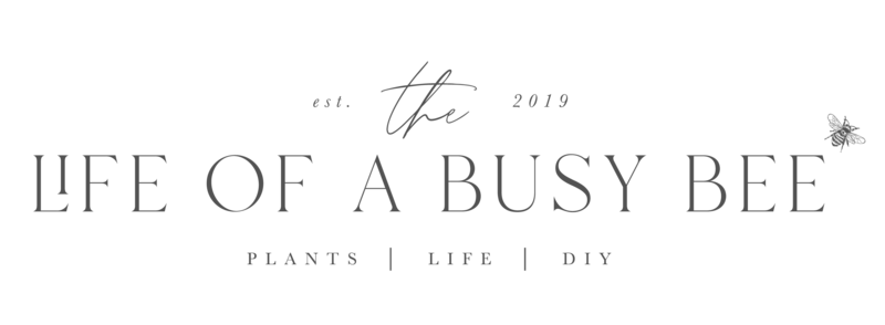 Life of Busy Bee logo-01