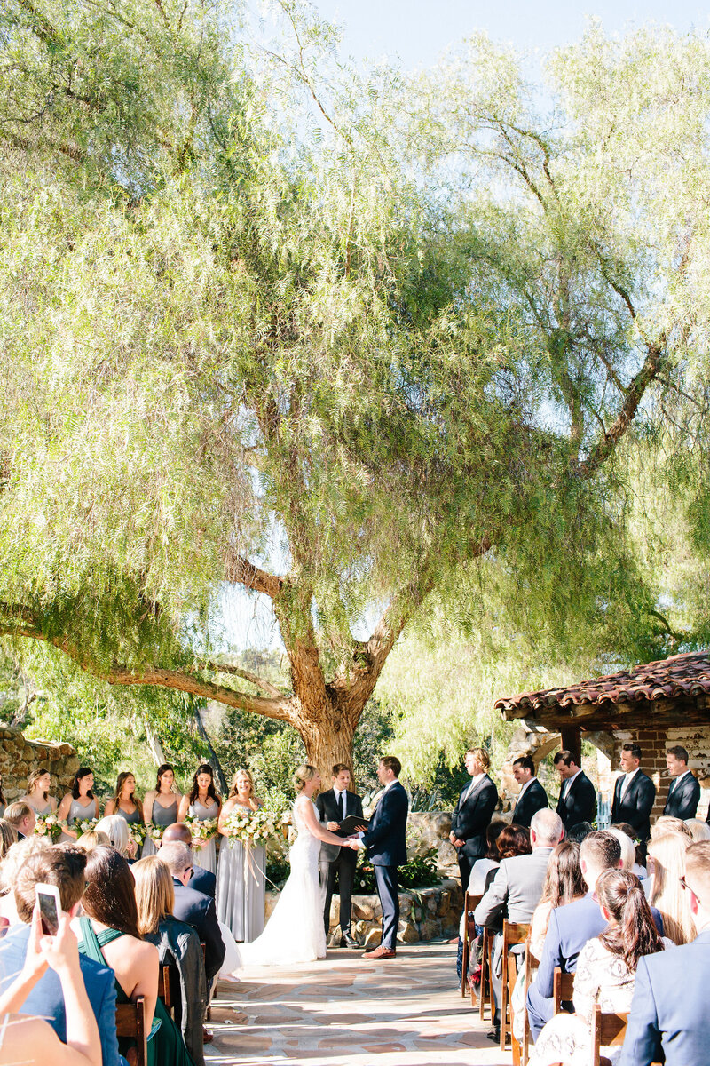 Courtney_Ian_Wedding_423_IBR