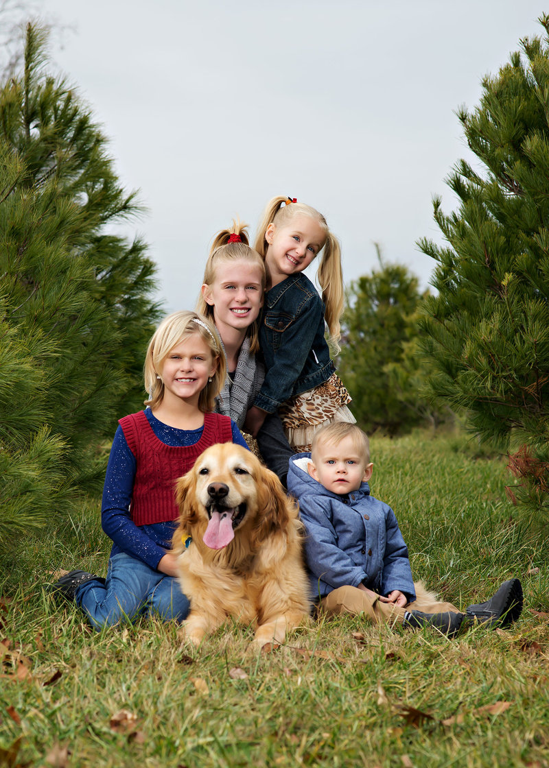 family pictures with their dog at the tree farm in lansing michigan