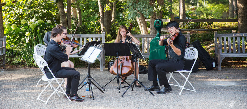 Nexus Strings Perform at a Cocktail Hour at Denver Botanic Gardens Wedding