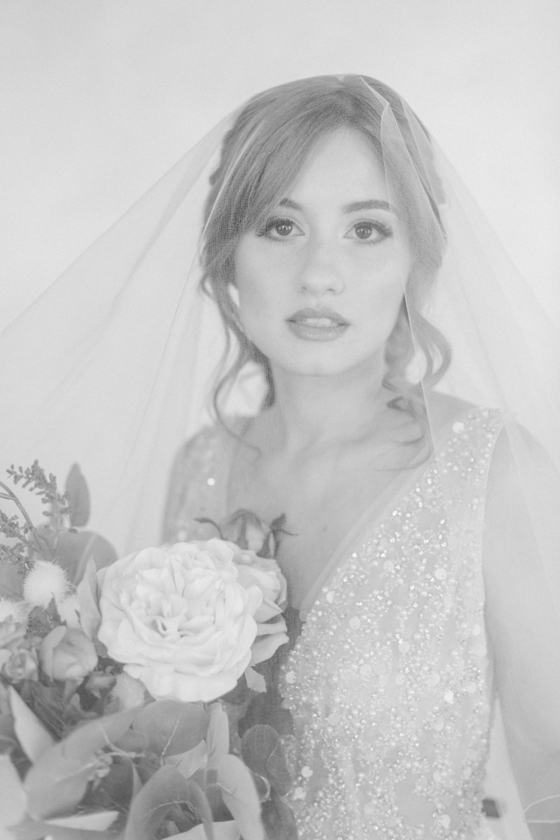 Fine Art Bridal Portait