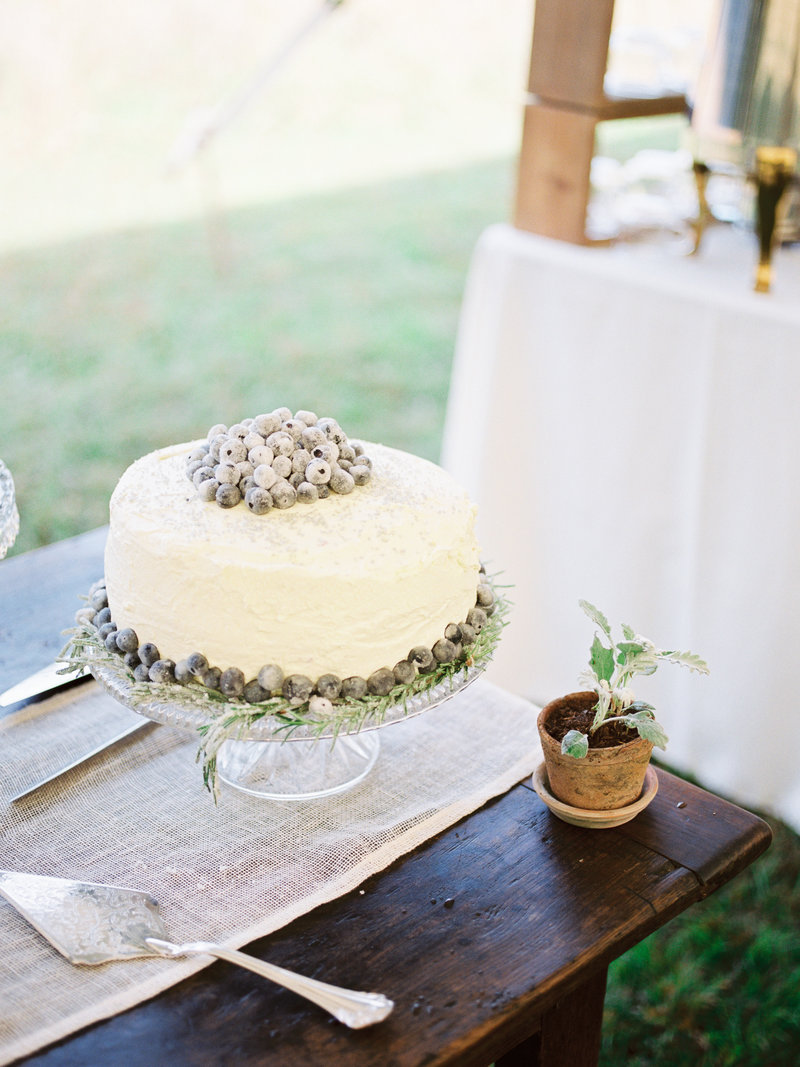 homemade cake outdoor wedding reception