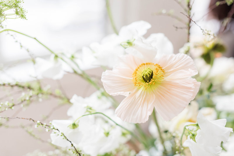 Fine Art Spring Elopement - Sweet Williams Photography     _-16