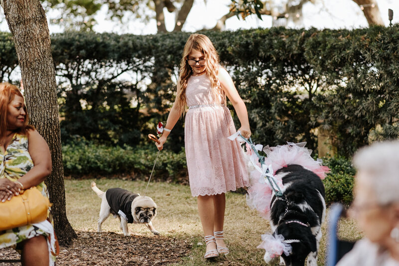 "alt=""dogs in wedding ceremony"""