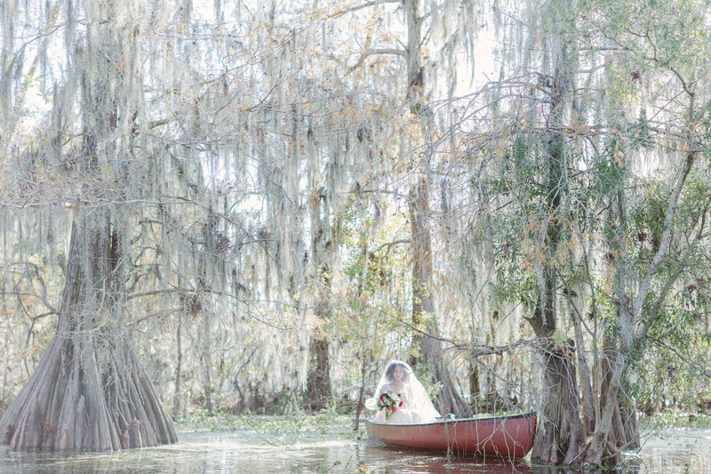 Most Beautiful bayou and swamps