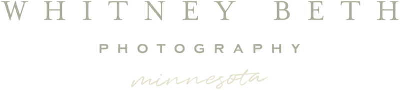 Whitney Beth Photography Wedding Engagement Portrait Photographer Minneapolis Minnesota5