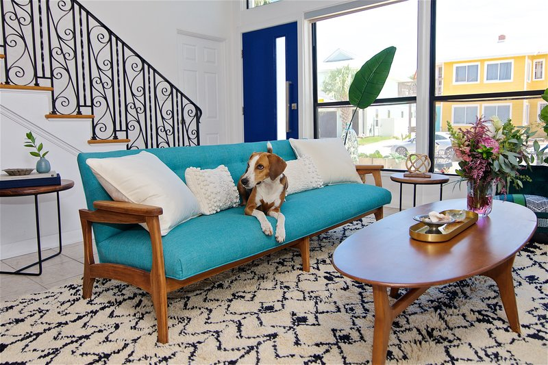 The owners dog rests of the sofa in this midcentury modern and bohemian influenced living room by Denver based interior designer Fernway & Avalon