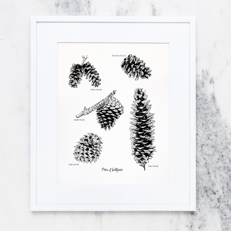 Etsy_NP_PinesCali_Framed_Print