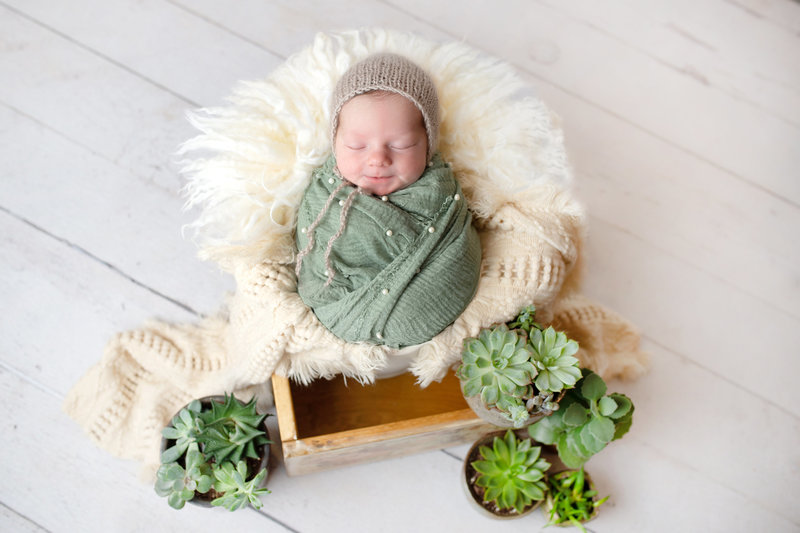 rustic chic newborn baby girl swaddled in earth tone with boho layers and succulents