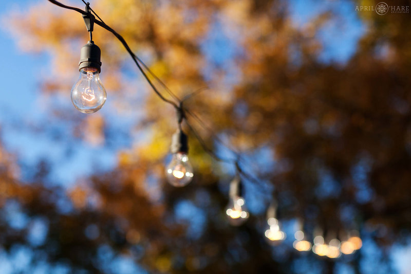 String lights hang on the patio at a fall wedding at Chatfield Farms in Denver Botanic Gardens